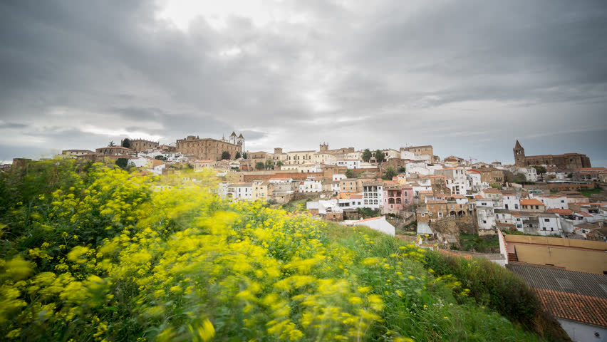 Wide angle view of Caceres against yellow flowers, cloudy sky