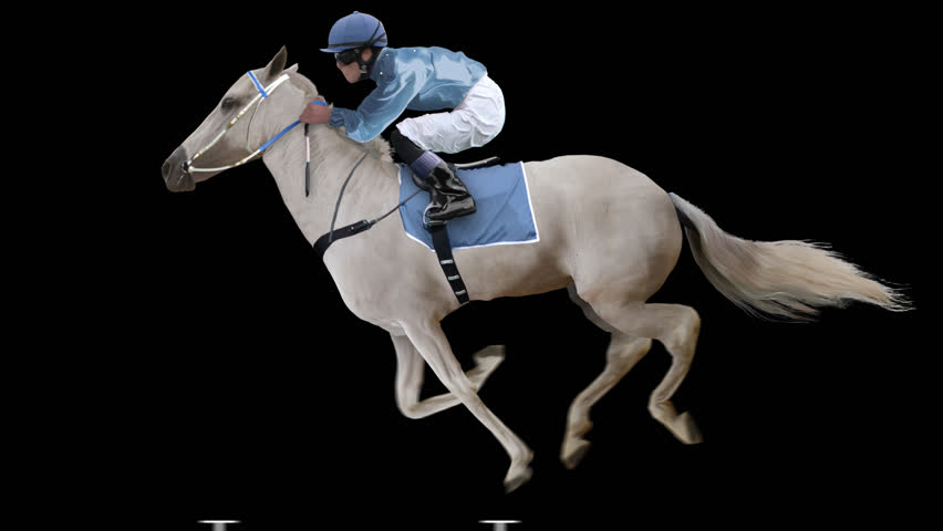 Jockey riding a white horse runs gallop. Isolated and cyclic. Can be used as a silhouette.