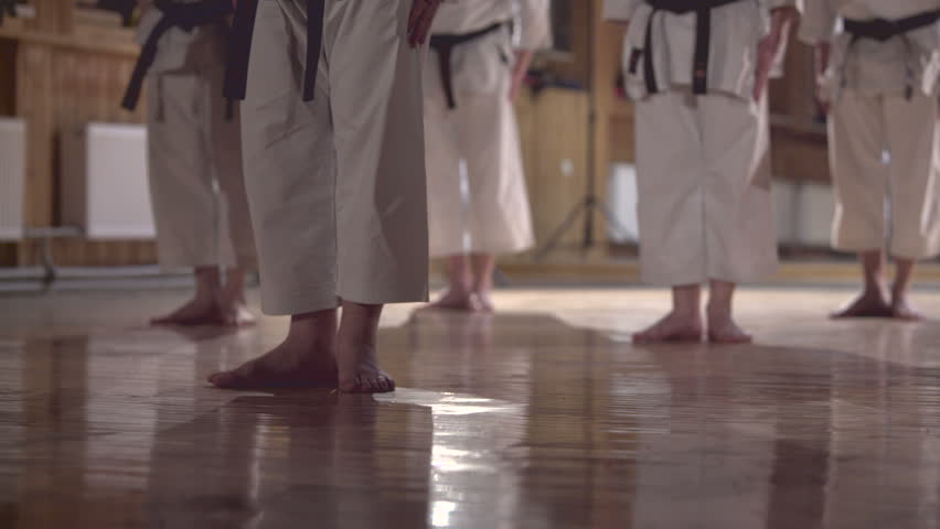 group of people practicing karate kata,dolly shot - HD stock video clip
