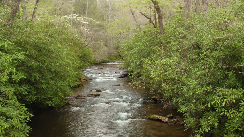 A rocky river in the Appalachian mountains in the Pisgah National Forest with spring time dogwood tree blooms along the river bank - HD stock footage clip