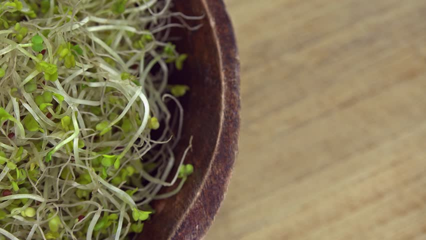 Portion of Broccoli Sprouts (not loopable 4K footage)